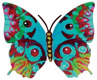 Hava butterfly side B